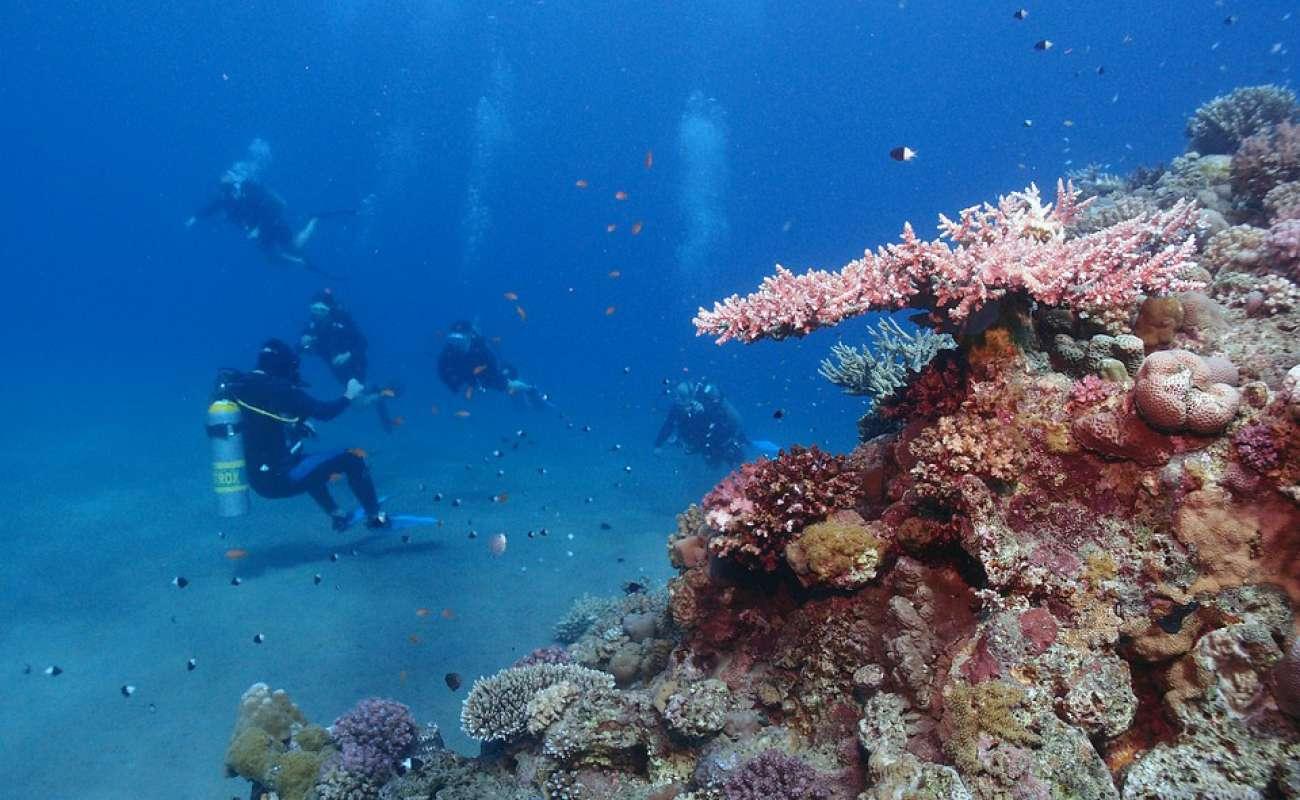 Za podmořským životem a historií do Hurghady